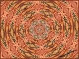 Common Redpole