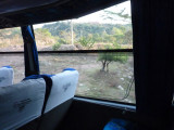 Bus to San Vicente 3