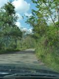 En route to Pauxi Pauxi 2