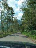 En route to Pauxi Pauxi 3