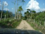 En route to Pauxi Pauxi 16