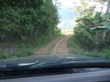 En route to Pauxi Pauxi 18