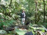Striking a pose 2 - Helmeted Curassow Reserve / RNA Pauxi Pauxi