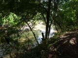 Riverside trail 2 Blue-billed Curassow Reserve / RNA El Paujil