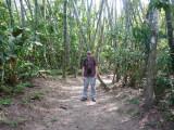 Striking a pose, Riverside Trail, Blue-billed Curassow Reserve / RNA El Paujil