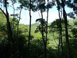 On way up to Sendero Lomo Patico