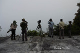 Shooting in the mist.
