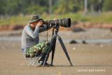 Tawau - Shooting the waders.