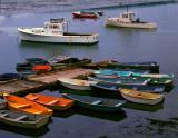 Cape Porpoise Me-3.jpg