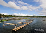 Bunot Lake D300_26494 copy.jpg