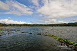Bunot Lake D300_26498 copy.jpg