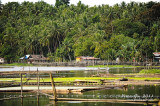 Palakpakin Lake D700_15229 copy.jpg