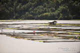 Palakpakin Lake D700_15298 copy.jpg