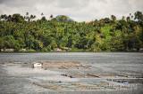 Sampaloc Lake D700_15410 copy.jpg
