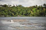 Sampaloc Lake D700_15410-2 copy.jpg
