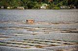 Sampaloc Lake D700_15417 copy.jpg