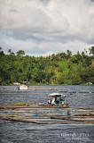 Sampaloc Lake D700_15429 copy.jpg