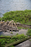 Yambo Lake D700_15471 copy.jpg