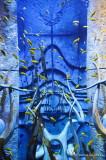 Atlantis, Dubai D300_27439 copy.jpg