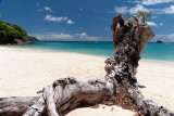 St.Vincent and the Grenadines 2011