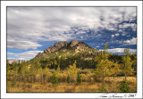Lily Mountain 6216.jpg