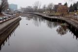 Ruisseau de la Brasserie presque à sec