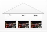 D4D800 Size 1.jpg