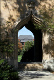 Catt Hall through Shadowy Campanile
