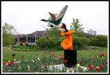 Hummingbird and Tulips