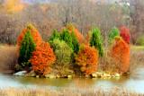 Autumn Rerun