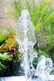 Fountain View 2