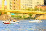 On the Allegheny