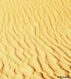Colorado Sand Dunes National Park