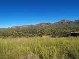 Ruby Road, a Truly wild area of Arizona