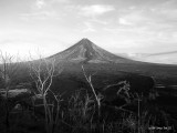 Mt. Mayon in B&W