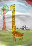 giraffe, Edward, age:5
