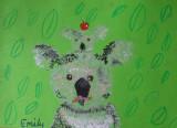 koala, Emily, age:8.5
