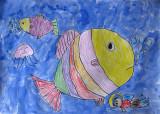 fish, Gu Pan En, age:5
