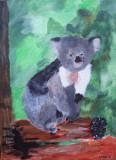 koala, Kong Ling, age:8