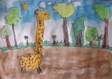 giraffe, Lucus, age:4.5