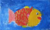 fish, Patrick, age:4.5
