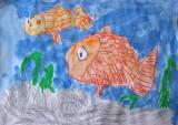 fish, Owen Zhao, age:4.5