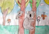 koala, Eva, age:5
