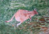 kangaroo, Vivian Phu, age:7.5