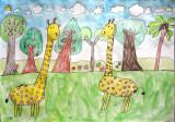 giraffe, Gu Pan En, age:6