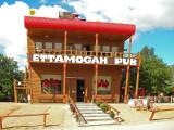 Visiting the Ettamogah Pub