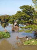 FLOODED LAND ON THE MEKONG