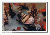 076   Blue top snail (Calliostoma ligatum), Butress Island, Slingsby Channel