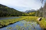 Cub Lake 1