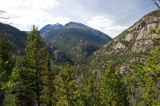 Cub Lake Trail 8